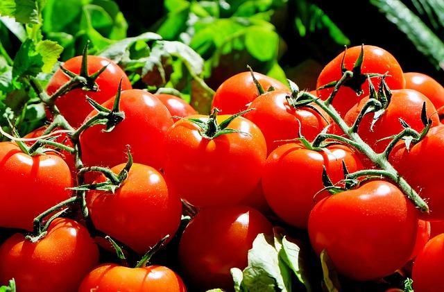 トマトの夢占い