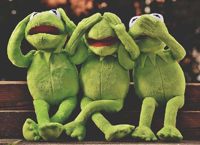 蛙の夢占い
